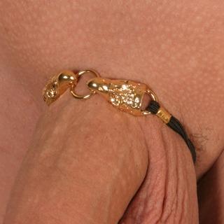bh100 0 bracelets aigles base elastiquee or.jpg