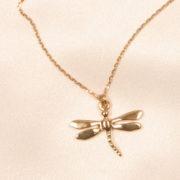 cheville libellule