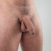 joya-pene-testiculo-serpiente-cobra-plateada
